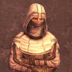 蒙面刺客的1级护甲