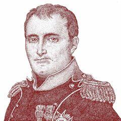 拿破仑·波拿巴的一幅画像