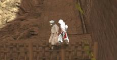 Altair en Ayman