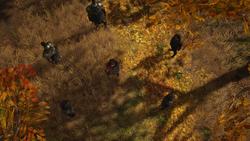 ACOD LotFB Protector of Persia - Kassandra Surrounded