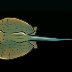 Yellow Stingray - 稀有度:非常稀有,尺寸:小
