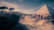 ACO Medjaÿ de l'Égypte 7