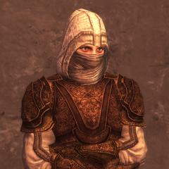蒙面刺客的3级护甲