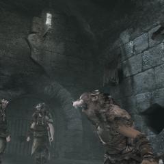 Un Adepte appelant ses confrères à combattre Ezio