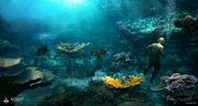 AC4 - Florida Open Water by janurschel