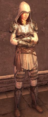 Female Assassin Armor Level 4