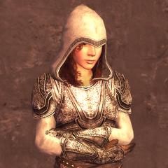 女刺客的4级护甲