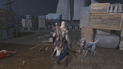 AC3 Guard Dog