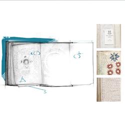 ACIV Manuscrit de Voynich