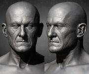 ACOD Protagoras Head Models