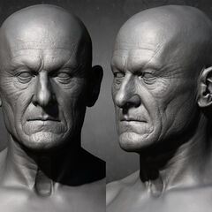普罗泰戈拉的面部模型
