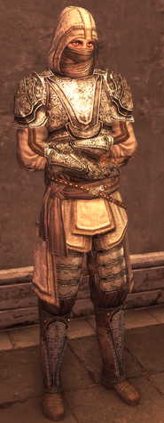 Male Assassin Level 4 Armor