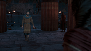 ACOD Consulting A Ghost - Herodotos Awaiting Kassandra