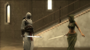 Assault Shalim and Shahar 5
