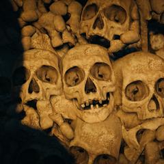 Arno cachant les restes de Germain dans les catacombes de Paris