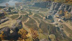 ACOd-Lesbos-Vineyard