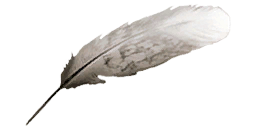 Feather ac2