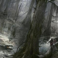 艾芙琳在河口的巨木和树杈间穿行