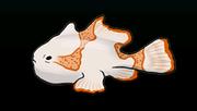 FrogfishACP