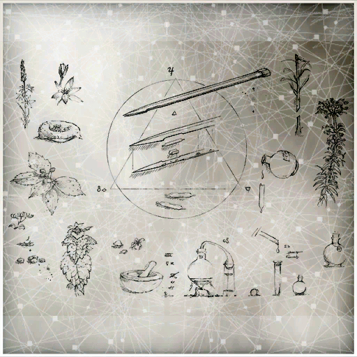 Zw-codex-21