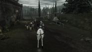 ACII Course à cheval 2