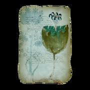 AC4BF Voynich Manuscript - Folio 35r