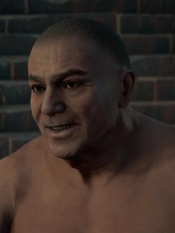 ACO Hilarus Maximus