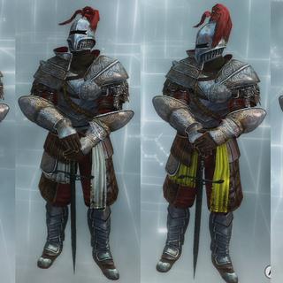 骑士的服装颜色