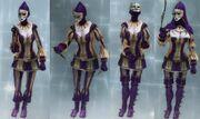 Hellequin gear