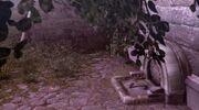 Tanière de Romulus Pyramide