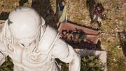 ACOD - Hippokrates hesitates to treat Galeos