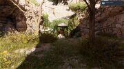 ACO Shrine of Whispers Entrance