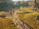 Mytilene Farm