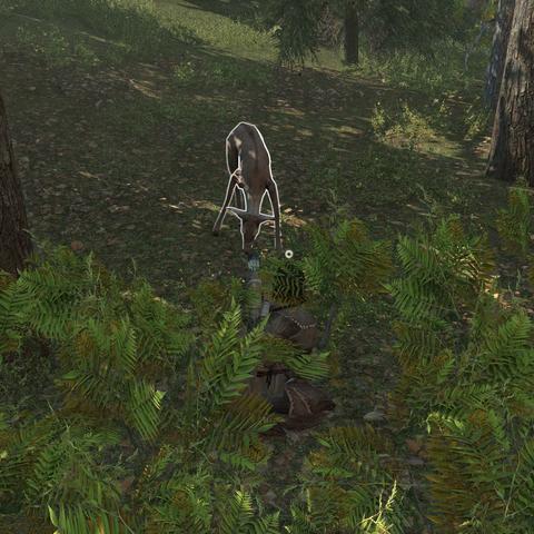 拉顿哈给顿狩猎一只鹿