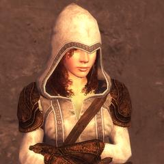 女刺客的2级护甲