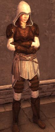 Female Assassin Armor Level 3