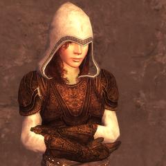 女刺客的3级护甲