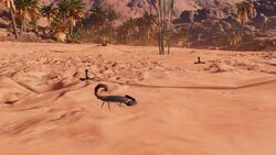 ACO-scorpions
