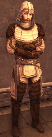 Male Assassin Armor Level 2