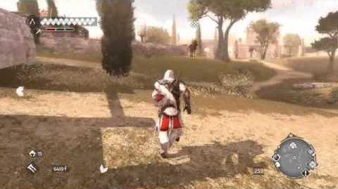 Assassin's Creed Brotherhood - Баги и приколы