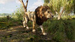Lion-egypt