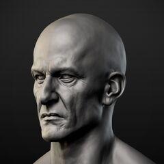 大流士的头部模型