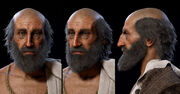 ACOD Pythagoras head models