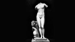 DTAE Venus Anadyomene