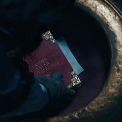 Le <b>chevalier</b> cachant le codex...