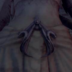 阿蒙内特的刺客徽记