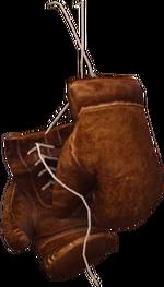 ACS boxing gloves