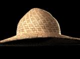 Thaleia's Overprotective Hat