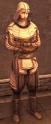 Male Assassin Armor Level 1