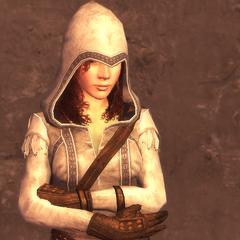 女刺客的1级护甲